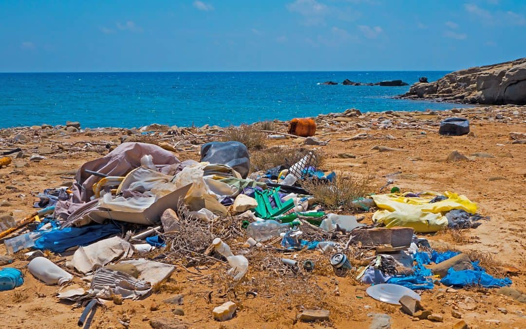 Single Use Plastic's Unwelcome Impact on the Planet